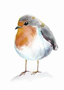 chubby robin spring watercolour art print | Different ...