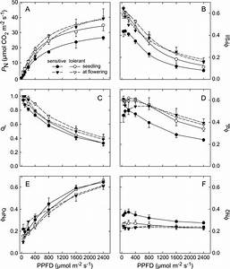 Light Response Curves Of Photosynthesis  A   Operating