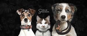 Milk And Pepper : milk pepper fashion and accessories for dogs cats ~ A.2002-acura-tl-radio.info Haus und Dekorationen