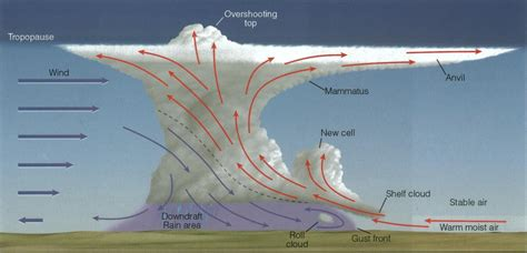Simple Thunderstorm Diagram by Interestingasfuck