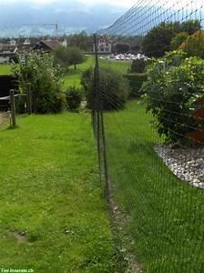 Katzennetz Balkon Unsichtbar : 2m hohes katzennetz schutznetz schwarz l nge nach mass tierinserat 172270 ~ Orissabook.com Haus und Dekorationen