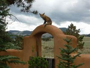 Guffey, Colorado 80820 Listing #19129 — Green Homes For Sale