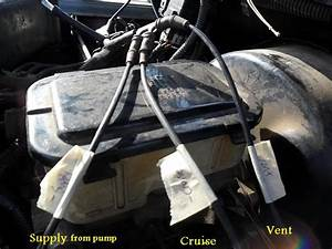 1999 Dodge Transfer Case Vacuum Lines Diagram  Dodge  Auto Parts Catalog And Diagram