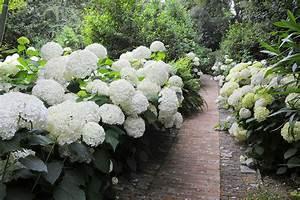 Jardins à L Anglaise : visite d 39 un jardin l 39 anglaise sur la riviera italienne ~ Melissatoandfro.com Idées de Décoration
