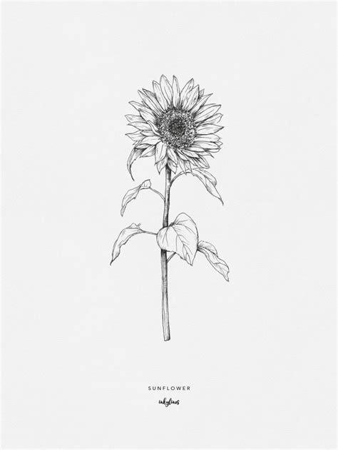 Sunflower | Sunflower tattoos, Sunflower drawing