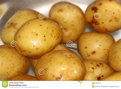 pomme de terre dans l eau photographie stock libre de