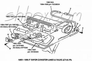 Throttle Body Vacuum Hose Part Numbers