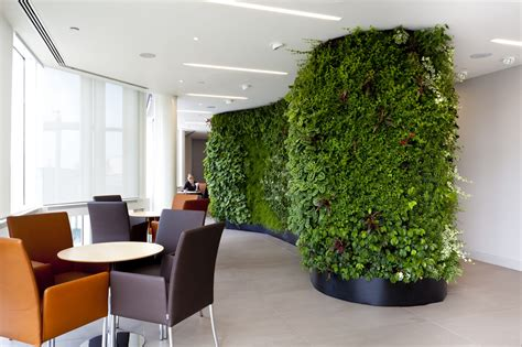 indoor plants low maintenance interior garden design installation dallas ft worth tx