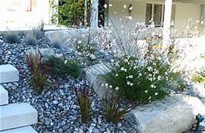 Bilder Von Steingärten : pflanzen steingarten sonnig wohn design ~ Indierocktalk.com Haus und Dekorationen