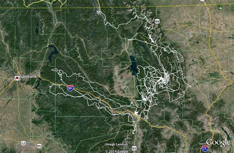 Grizzly Bear That Traveled 5,000 Miles Across Idaho