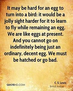 17 Best images ... Egg Lady Quotes