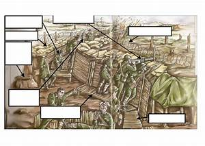 Life In The Trenches Lower World War One By Joelhistory - Teaching Resources