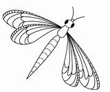 Dragonfly Vector Clip Clipart Designs sketch template