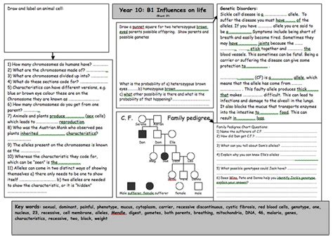 all worksheets 187 science worksheets ks4 printable