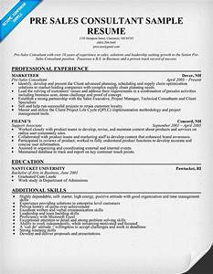 Pre  Sales Consultant Resume Sample  Resumecompanion Com
