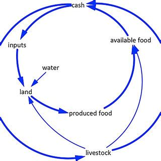 Food Loop Diagram by Pdf Transforming Food Systems At Local Levels Using