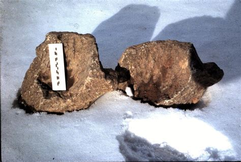 Lecture Will Reveal History Of Steatite Artifacts In