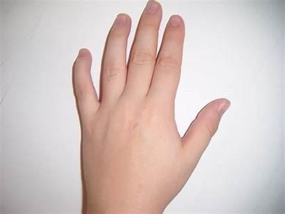 Hand Child Publicdomainpictures