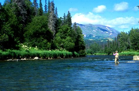 Our Five Favorite Rivers for Fly Fishing in Alaska   No ...