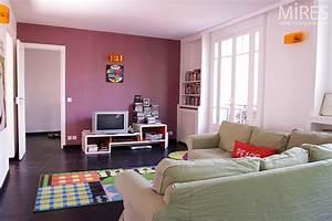 Salon Gris Et Rose : deco salon rose et gris ~ Melissatoandfro.com Idées de Décoration
