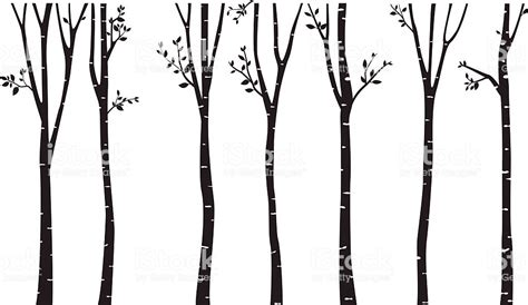 aspen forest silhouette light birch tree silhouette background stock vector more images of animal wildlife 618225226