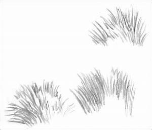 DRAWING GRASS and WEEDS tutorial (part 1) by Diane Wright