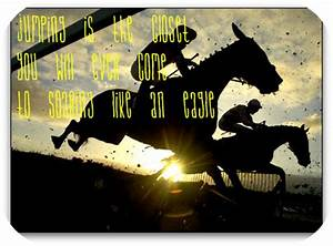 Show Horse Quotes And Sayings. QuotesGram