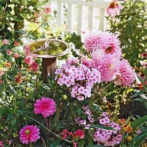 Blumen Für Schattige Plätze : herrliche garten landschaft voller bunter blumen ~ Michelbontemps.com Haus und Dekorationen