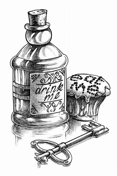 Drink Alice Eat Cake Sketch Wonderland Drawing