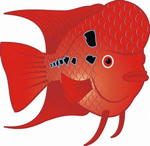 Red Fish Clip Art at Clker.com - vector clip art online ...