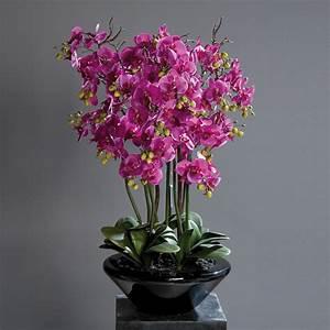 Orchideen Im Glas : orchidee phalaenopsis in schale kunstorchidee kunstblume ~ A.2002-acura-tl-radio.info Haus und Dekorationen