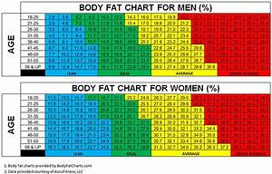 Ideal Body Fat Percentage For Men Over 50 Help Weight