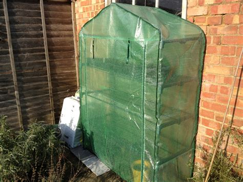best mail order plant company best plastic greenhouses love2learn allotmenting blog