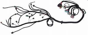 stand alone harness parts accessories ebay With ls1 swap wiring