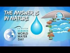 50 Creative Save Water Slogans - YouTube
