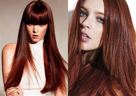 complete palette  red hair colors universe hairstyles