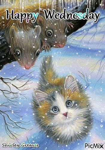 happy wednesday kitty winter quote pictures