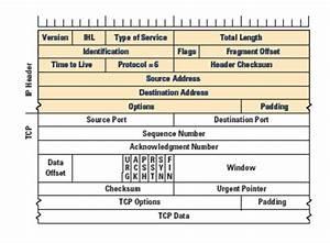 Ip Packet Diagram : osi the class 39 lan ~ A.2002-acura-tl-radio.info Haus und Dekorationen