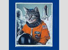 Space Cat Take Off Tee Exclusive ThinkGeek