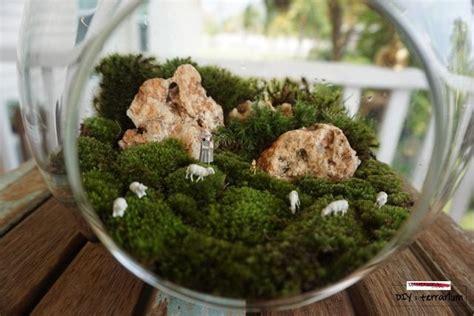 มาจัดสวนสวยในขวดแก้วกันเถอะ DIY terrarium