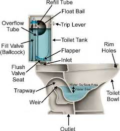 Bathroom Sink Smells Like Sewer by Eli5 Why Does Toilet Water Never Appear As Rising In The