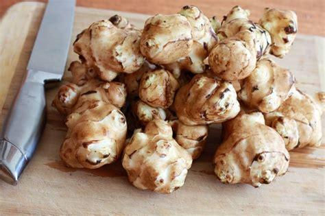 jerusalem artichoke cream of jerusalem artichoke leek and potato soup the daring gourmet