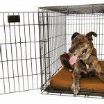 laifug 45dhi premium orthopedic extra large dog bed review With big barker dog crate pad