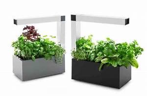 Mini Potager D Intérieur : herbie le mini potager d 39 int rieur inspiration cuisine ~ Dailycaller-alerts.com Idées de Décoration
