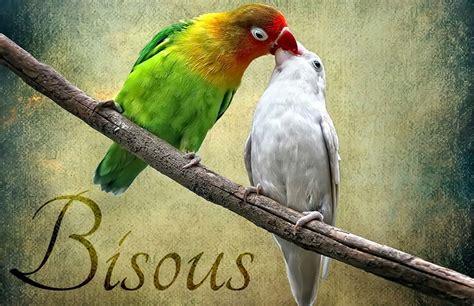 bisous en grec moderne bisous bisous