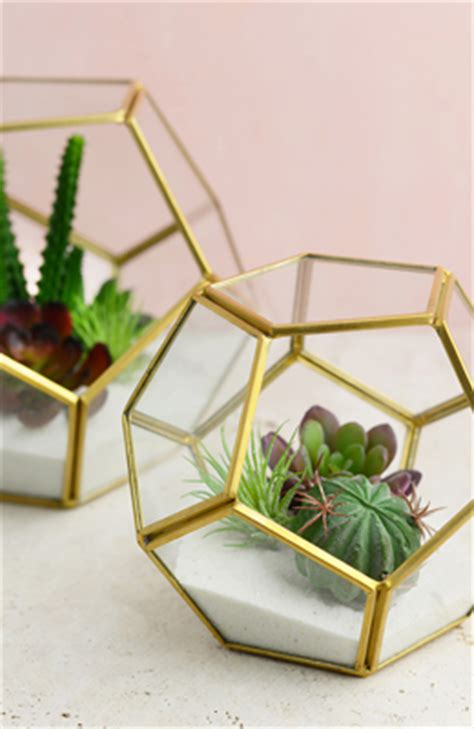 terrarium displays containers supplies saveoncrafts