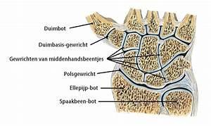 Stramme, pijnlijke handen : pijn in gewrichten hand en pols Mens