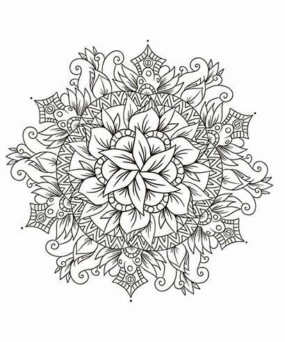 Flores Colorir Mandala Flor Dibujos Imprimir Mandalas