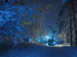 Free, Photo, Winter, Night, Street, Lamp, Shadow