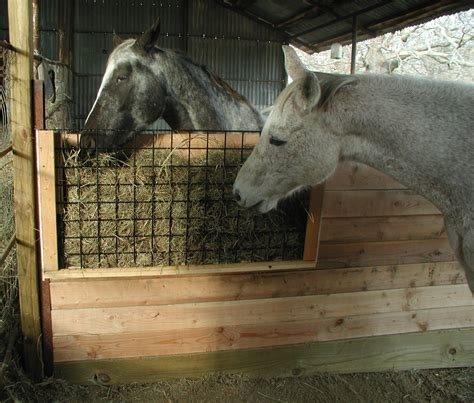 hay feeders for horses stall hay feeders car interior design